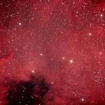 NGC 7000 - Nordamerikanebel mit Koma-Fehler