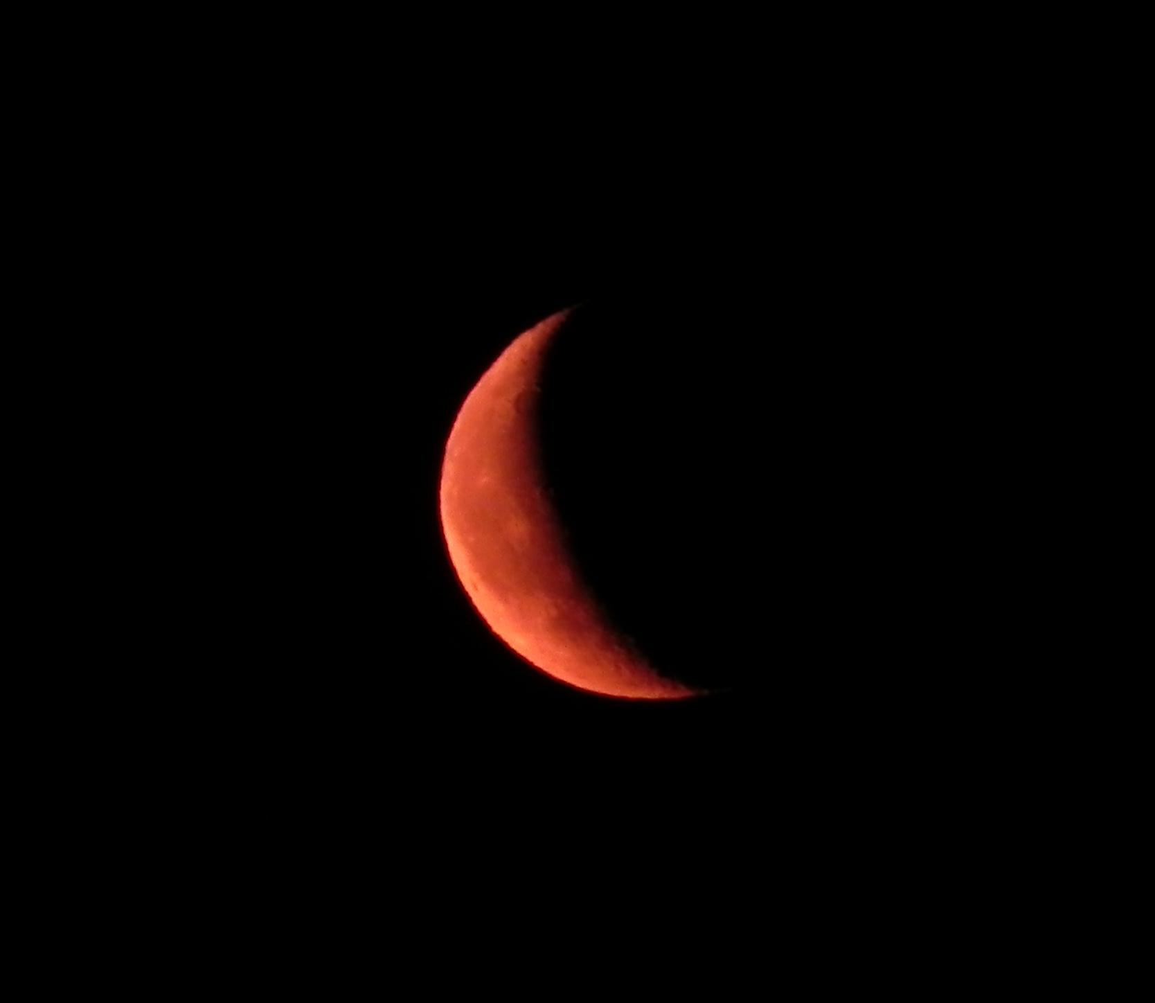 Aufgehender Mond knapp über dem Horizont
