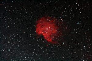 Affenkopfnebel (NGC 2174)
