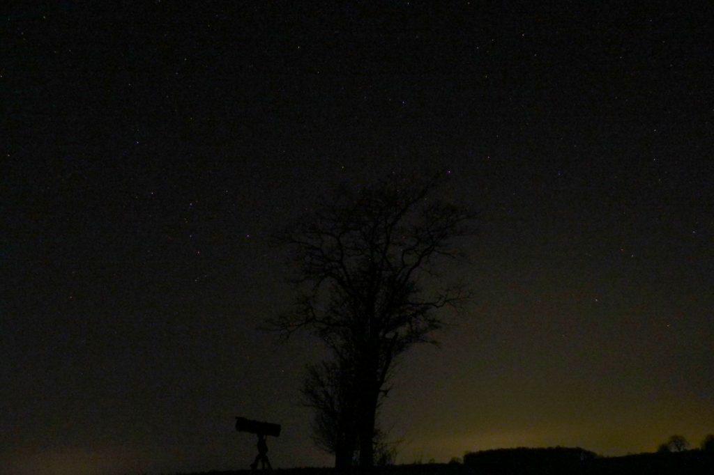 Unser Astrobaum